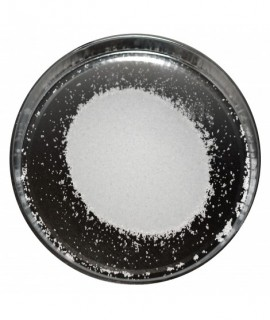 NATRIO CHLORIDAS (Druska...